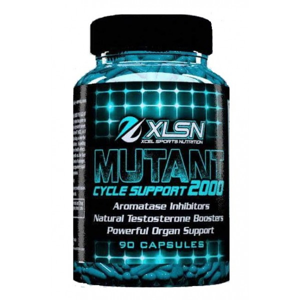 XCEL MUTANT CYCLE SUPPORT